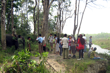Chitwan Jungle Safari